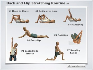 No Gym Required 10 Moves To Change Your Life Aim4mbshealth